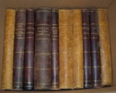 Set of Dickens Books